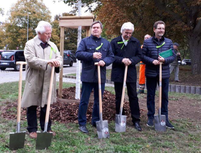 """Baumpflanzung im Rahmen der Gedenkveranstaltung """"30 Jahre Friedliche Revolution"""""""